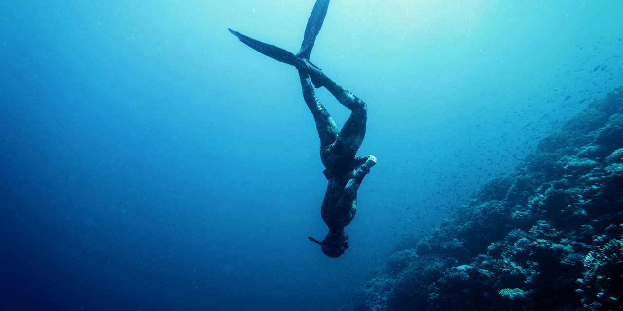 Basic Freediving Course In Madeira (SSI Certified