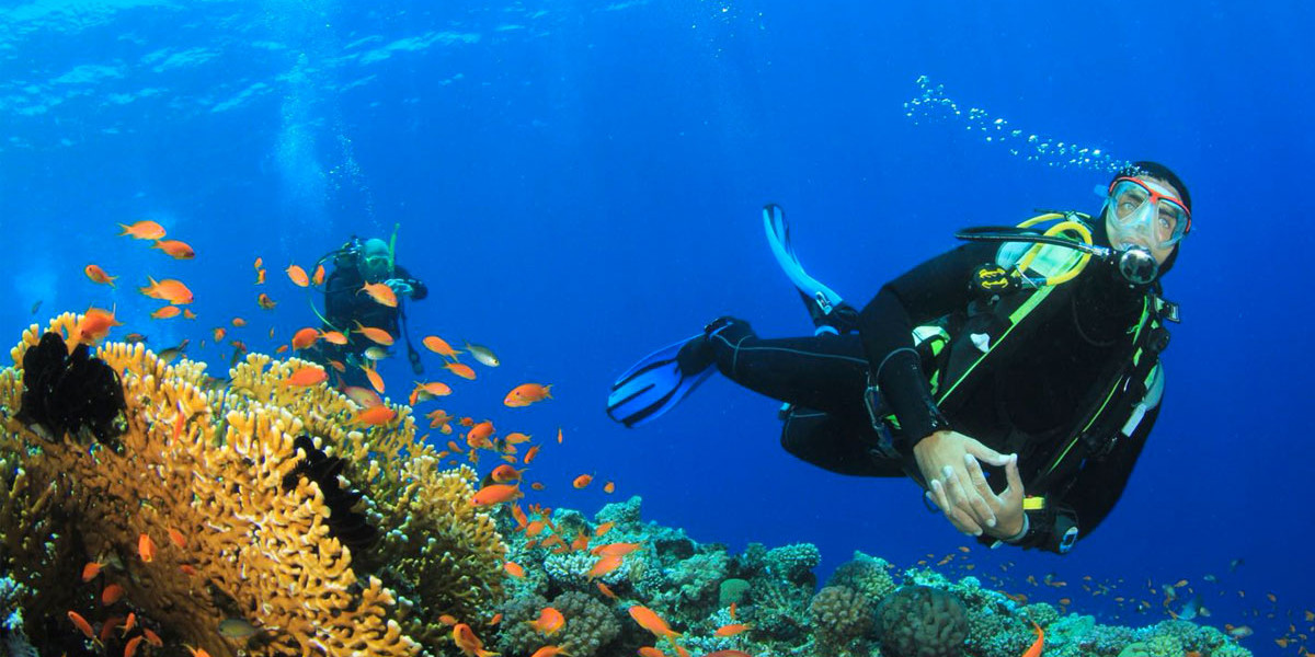 Try scuba diving in shallow waters with PADI in Tenerife