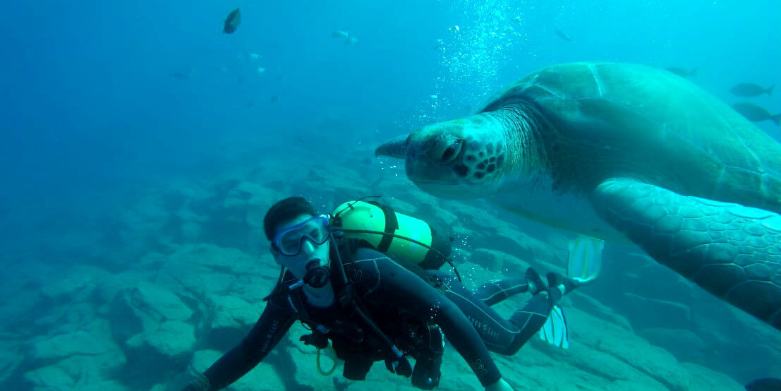 Discover Scuba Diving with Turtles in Tenerife